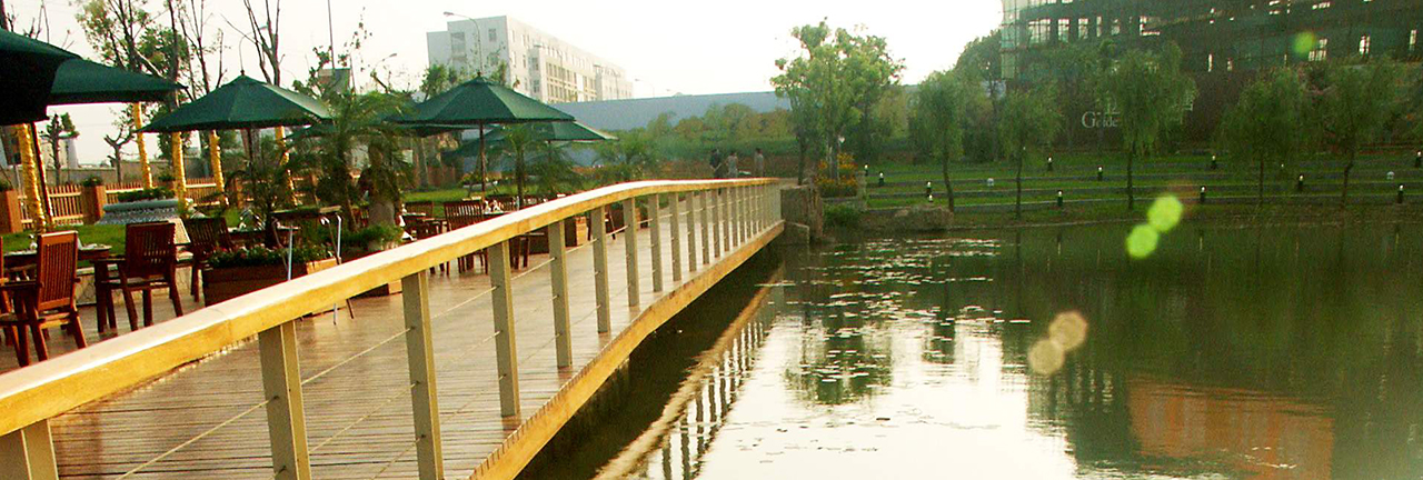 钱塘·金色池塘